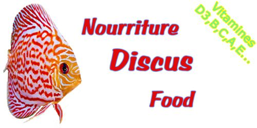 discus_food_nourriture